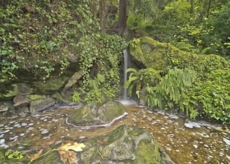 Gardens & Tranquil Retreats